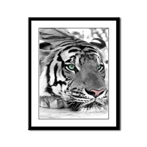 Lazy Tiger Framed Panel Print